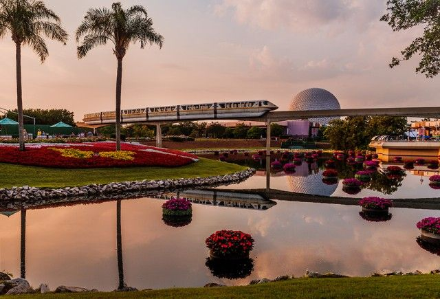 Walt Disney World Memorial Day Trip Report - Part 3 - Disney ...