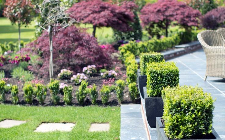 landscape garden. private garden. patio