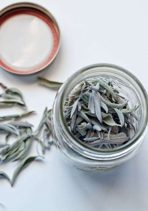 How to dry herbs - I used this method for my lavender, but I dried the rest of my food herbs in the oven.  It was a little more labor-intensive, but much faster and I didn't have to worry about the cats getting to them.