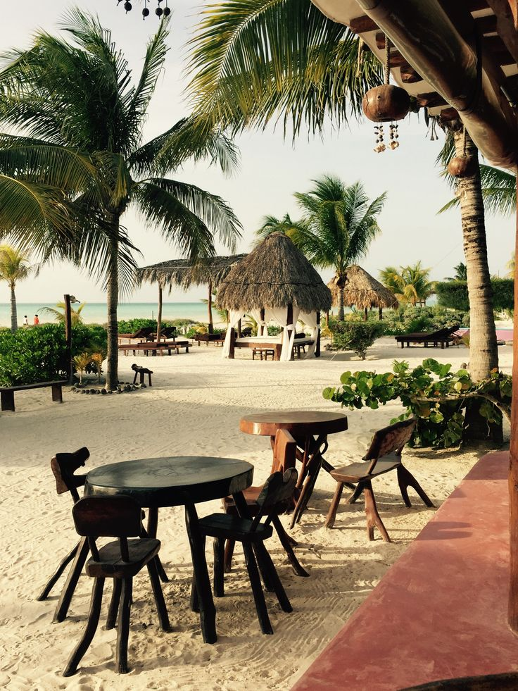 One of my views while eating fresh, home cooked meals at Palapas del Sol in Holbox, Mexico.