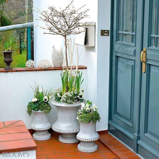38 besten balkonbepflanzung bilder auf pinterest. Black Bedroom Furniture Sets. Home Design Ideas