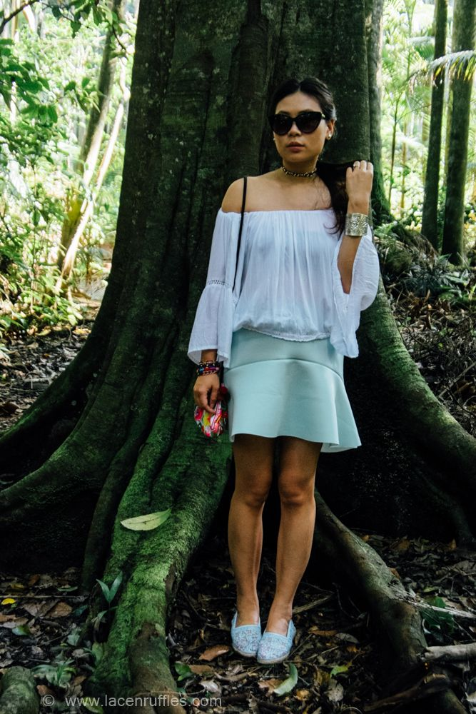 Songbirds in rainforest | Lace n Ruffles