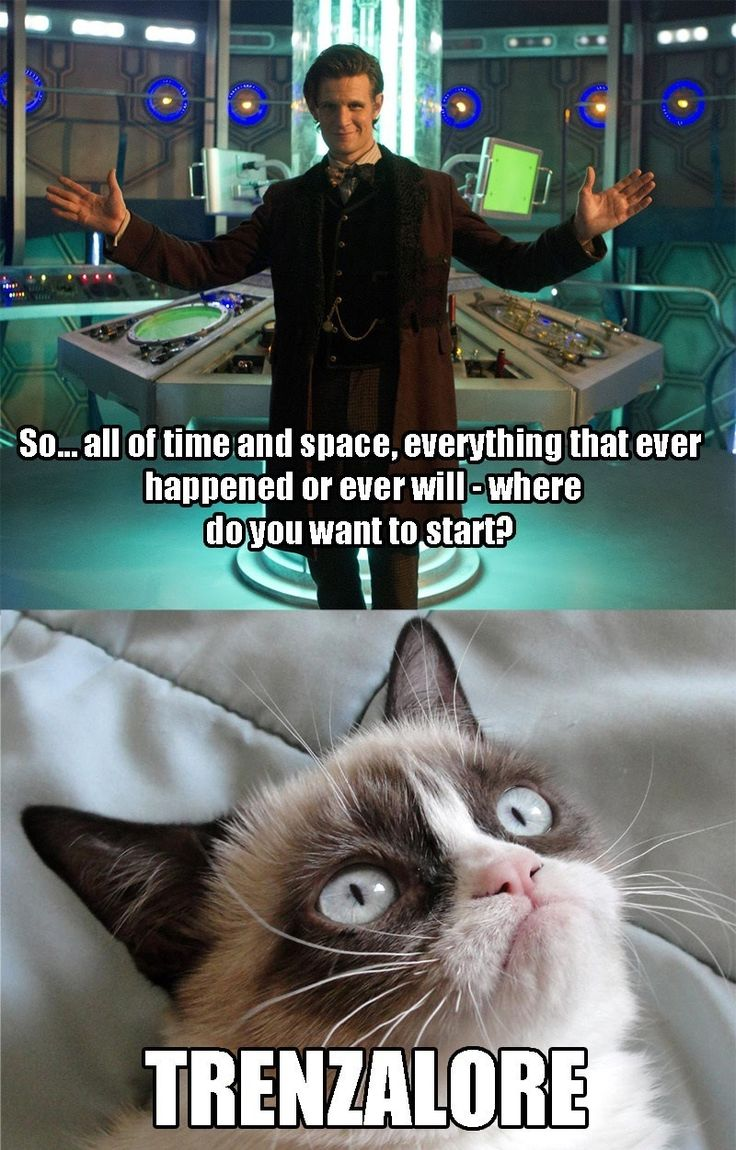 Comfy chairs doctor who - Grumpy Cat Would Make A Very Poor Doctor S Companion Doctor Who Matt Smith