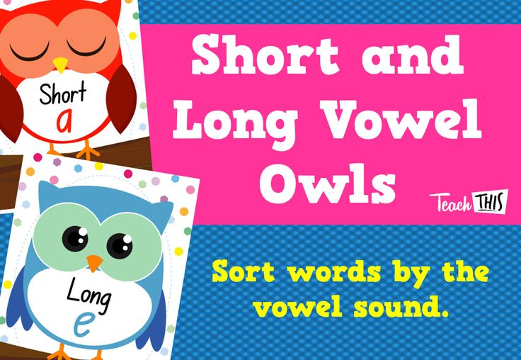 Short and Long Vowel Owls