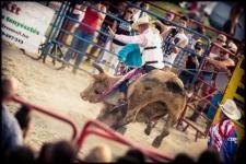 Pokoli üvöltés, a szőke gyilkos és gyötrelem a Monostori Erődben! - Lélegzetelállító Élő Bika Rodeó a Nemzetközi Amerikai Autó Fesztiválon
