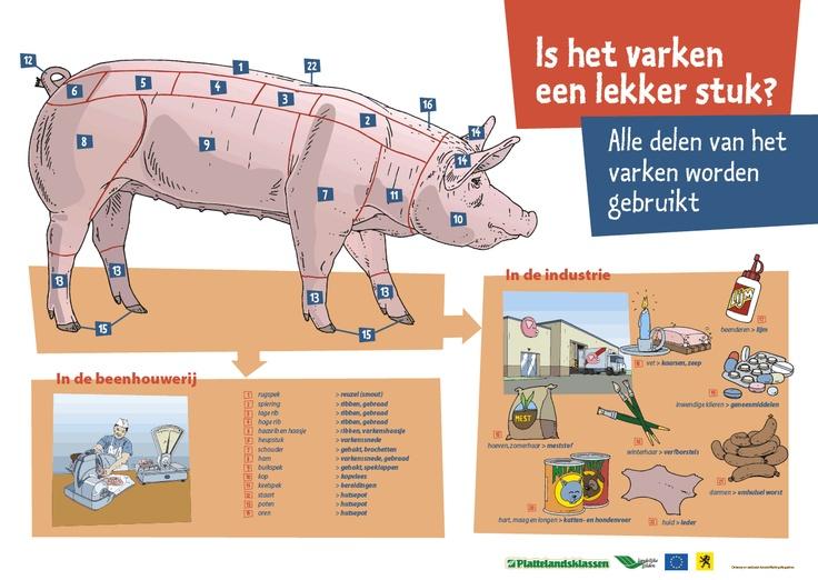 Poster varken lekker 1276 905 thema varkens kleuters pig theme preschool pinterest - Hoe een stuk scheiden ...
