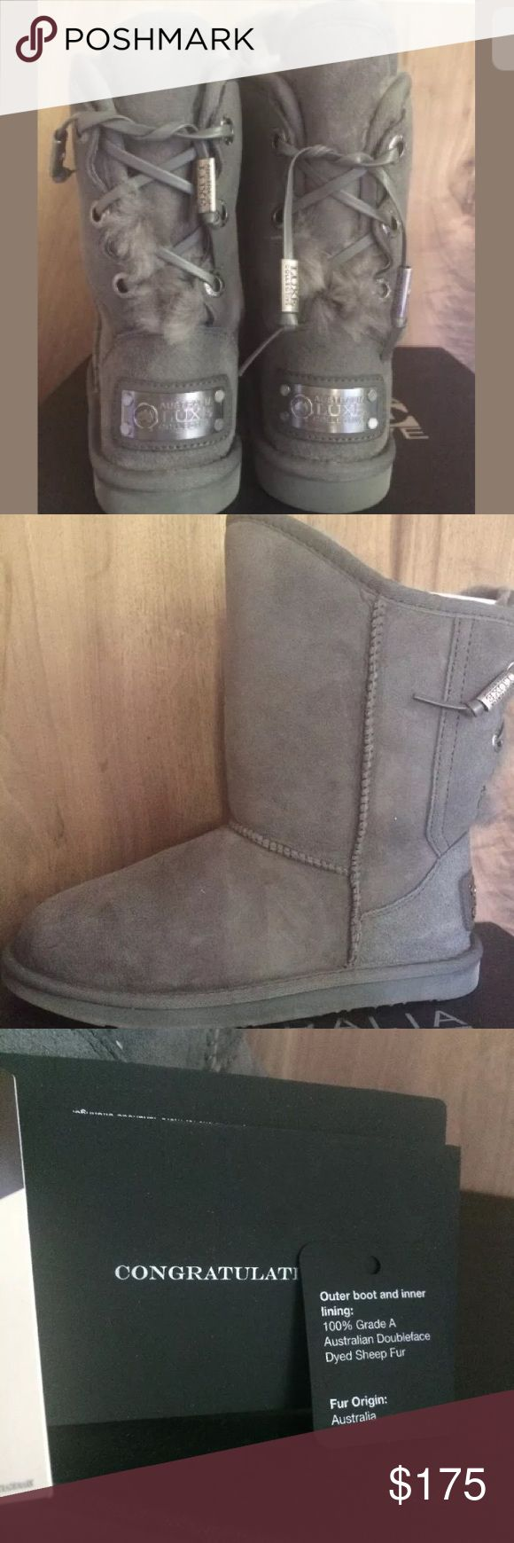 Australia Luxe Dita Gray Shearling Boots sz 8 Australia Luxe Collective NIB Dita Short Gray Women's Shearling Boots sz 8. New in box. Super cute lace back. Comes with an adorable boot keychain. ♦️No Trades♦️ Australia Luxe Shoes Winter & Rain Boots
