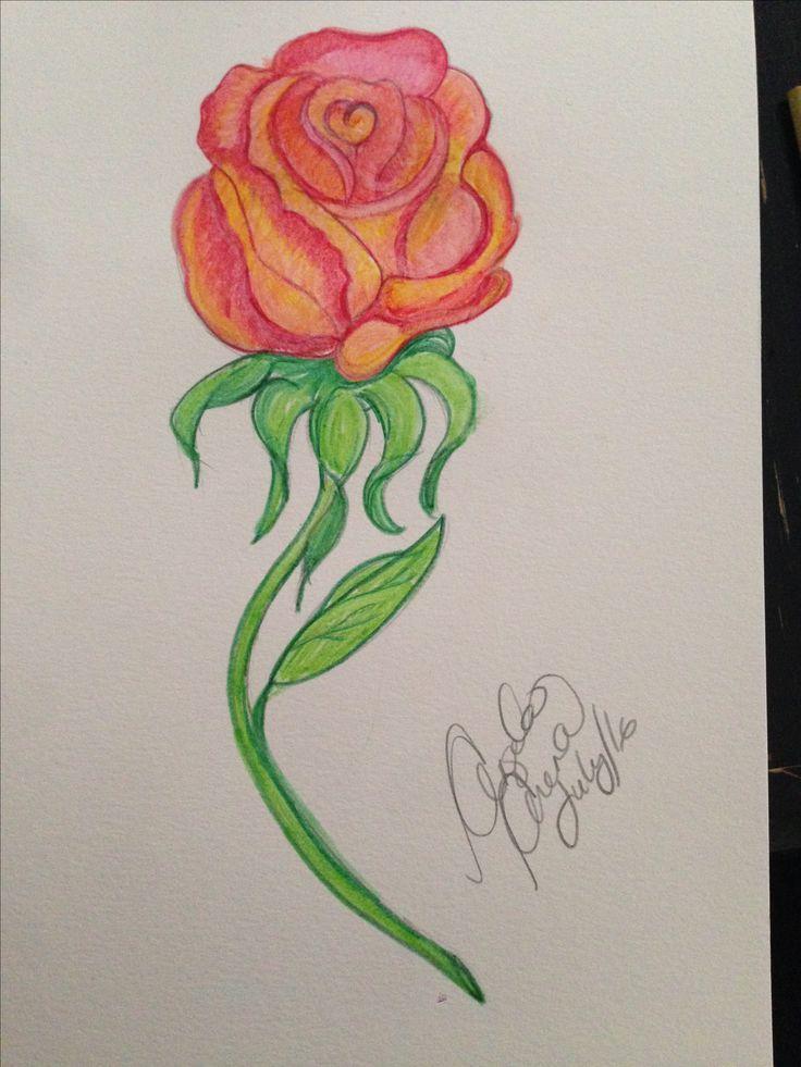 Watercolour rose drawing