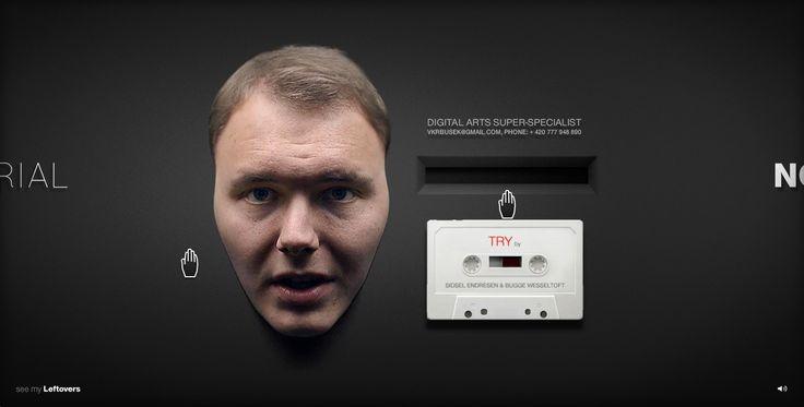 http://vaclavkrbusek.com présentation du profil et interactions originales