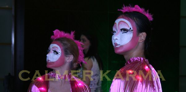 Pink Flamingo Ballet - stunning staged act.  Hint of Zoo themed entertainment to hire across the UK inc Manchester, London, Birmingham, Brighton and Wales. www.calmerkarma.co.uk Tel:  020 3602 9540