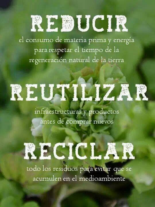 Las 3 R's de la ecología #3R