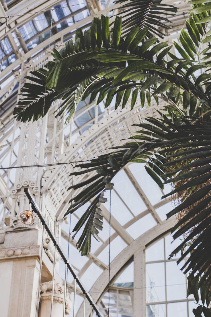 Palmenhaus, Palmencafe, Wien, Vienna, Must see, Tipps, Citytrip, Kurztrip, Innenstadt, Geheimtipp, Urban Jungle, Palm trees, Architektur, Architecture, Historisches Wien