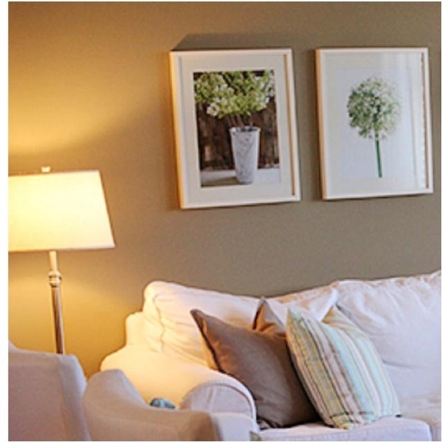 25 best images about paint on pinterest paint colors for Perfect tan paint color
