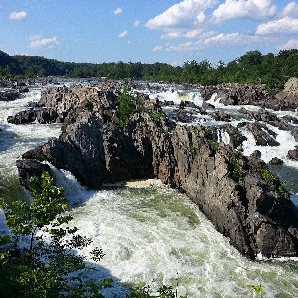 Great Falls (the Virginia side) is a beautiful place to hike or picnic. It has simple hikes for the whole family or more challenging ones for the experienced hiker. The views are spectacular and if you love climbing over big rocks (like me) you could spend hours exploring.