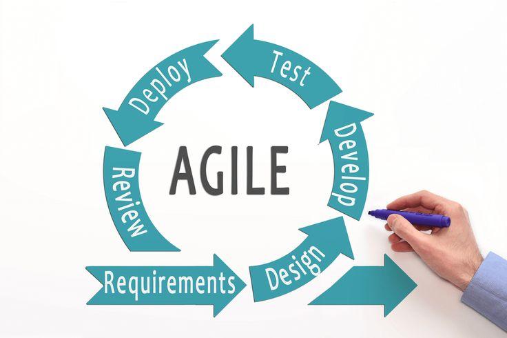 Il Processo di Sviluppo del Software   Lo Sviluppo Software  è un procedimento complesso che mette in relazione tra loro le Entità Sogget...