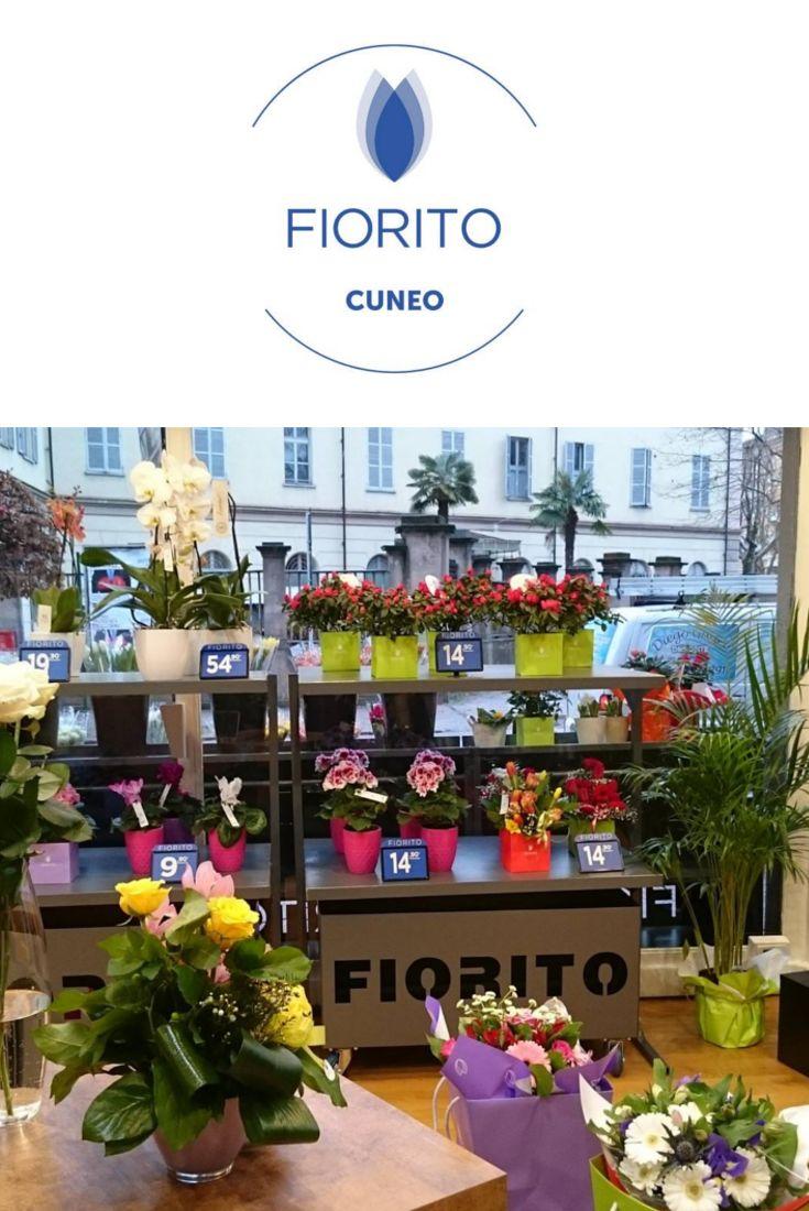 Felici di brindare con #FioritoCuneo che domani festeggia un anno di apertura! #cuneo #negozidifiori #festa #apertura #fiori #bouquet #Fiorito