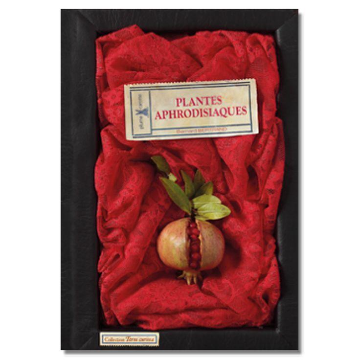 Plantes aphrodisiaques - Terra Curiosa