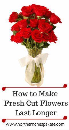 Got a gorgeous bouquet? Make fresh cut flowers last longer with these simple tricks.