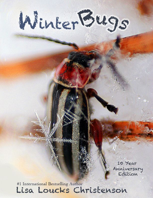 We have conducted an interview with Lisa Loucks Christenson the author of the 10th year anniversary edition of Winter Bugs. The book is a documentary inside a larger documentary (Walk the Burn), and is a study of insect life during a Minnesota winter.