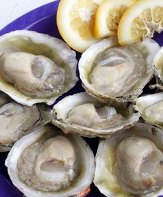 New Zealand Bluff Oyster. The best oysters in the world. A delicacy.