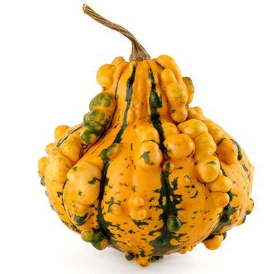 bumpy yellow gourd