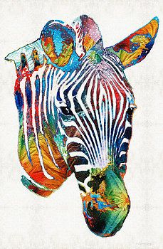 Sharon Cummings - Colorful Zebra Face by Sharon Cummings