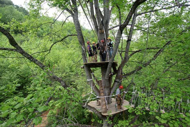 Barnardsville, North Carolina, zip line tours