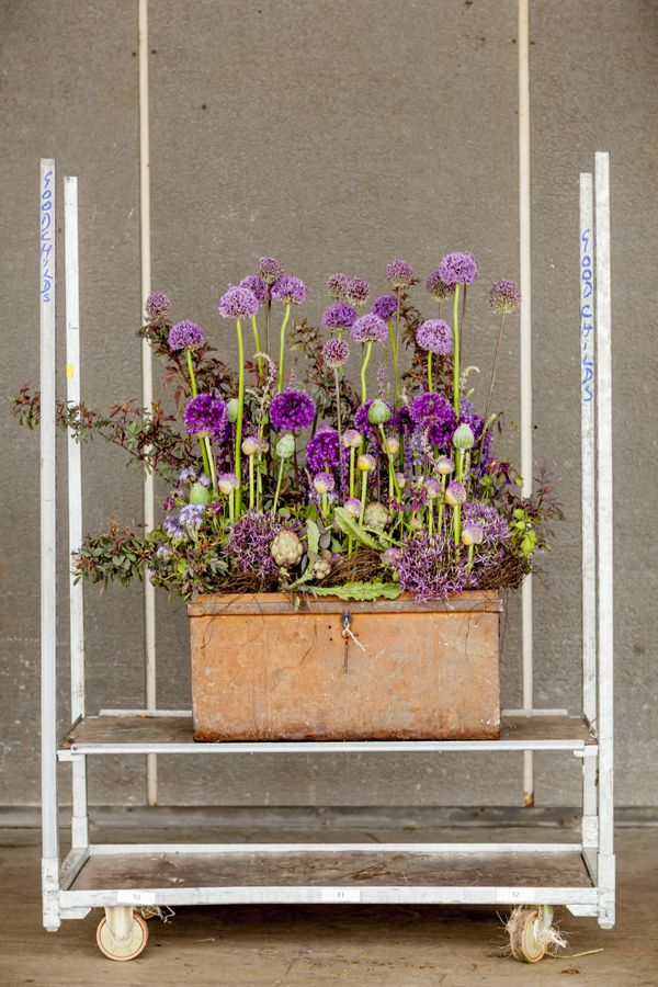 British-Flowers-Week-2015-New-Covent-Garden-Flower-Market-Flowerona-A ...