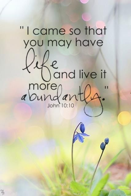 """John 10:10 ** """"Man's life is of God, not of his goods, however abundant they may be."""" ~ Henry Alford"""