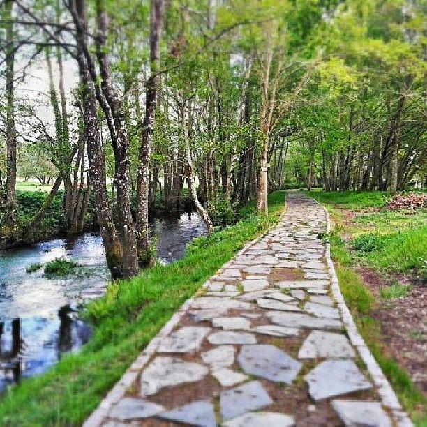 Paseo fluvial de #Maceda próximo a la #RibeiraSacra en #Ourense #Galicia #Spain Photo by acastineira