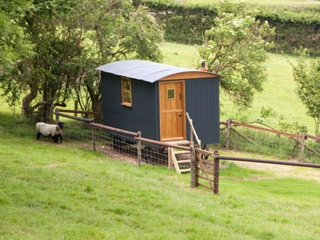 Stay in a shepherd's Hut at North Buckham Farm in Beaminster. Photography © natamagat