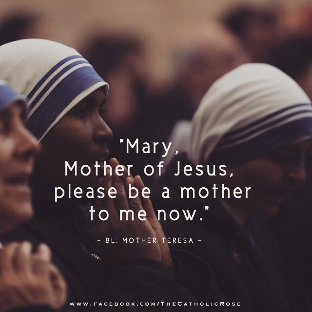 St. Teresa of Calcutta. No wonder she is so holy! Stay close to Mary.