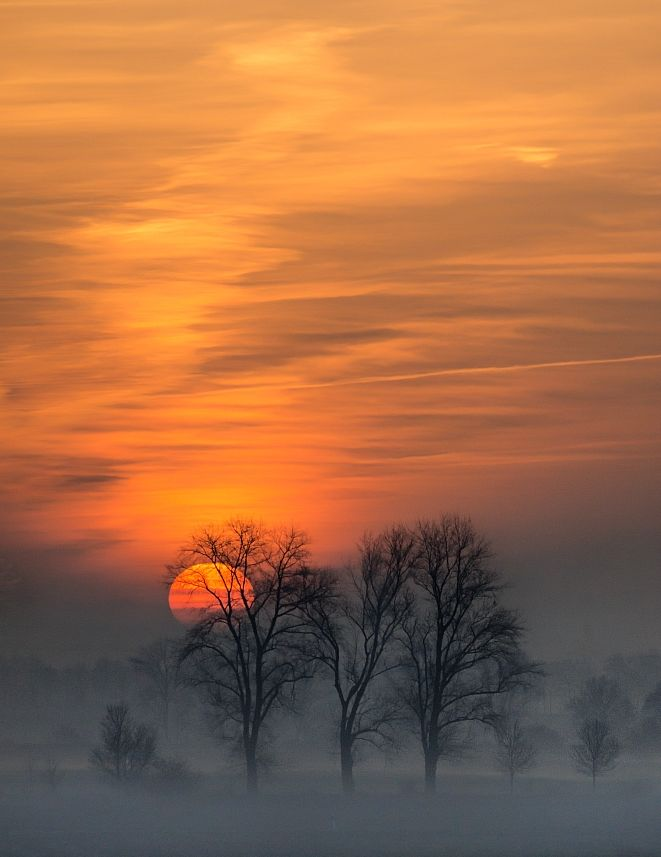 When the Day Starts So ... misty dawn beauty.