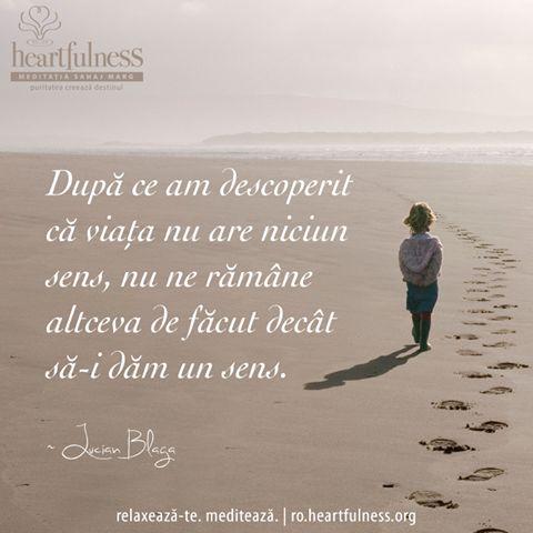 """""""După ce am descoperit că viața nu are niciun sens, nu ne rămâne altceva de făcut decât să-i dăm un sens."""" ~ Lucian Blaga #heartfulness   #inspiratii_zilnice   #hfnro Heartfulness Romania - Google+"""