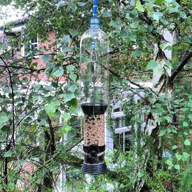 Anti Squirrel Bird Feeder Neat bird feeder