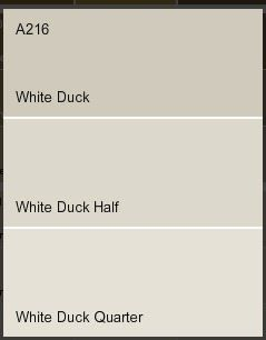 white duck for most of the house then half duck in bathrooms