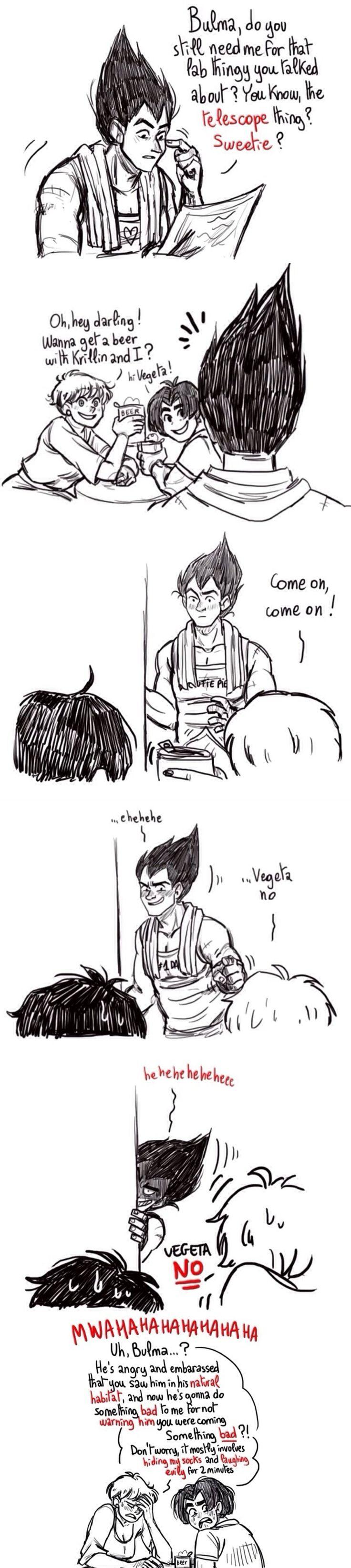 Vegeta and Bulma funny