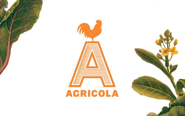 阿格里科拉設計的Mucca
