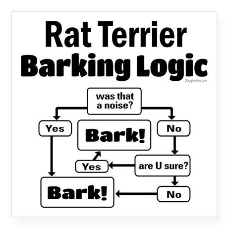 "Rat Terrier logic Square Sticker 3"" x 3"" on CafePress.com"
