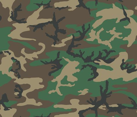 57 Best Images About Camouflages On Pinterest Survival