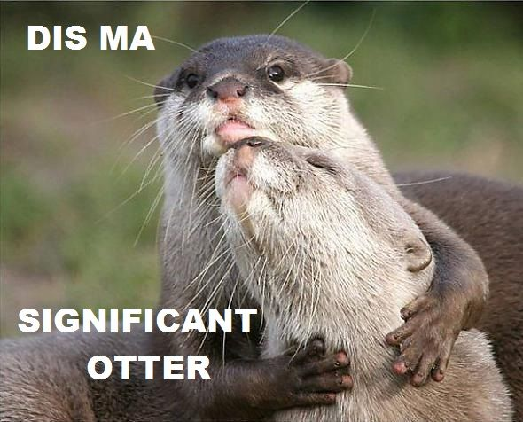 """""""Dis ma significant otter"""" (cute otters)"""