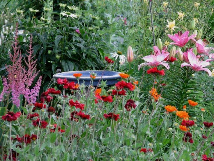 more flowers 009jpg 800600 small flower gardenssmall