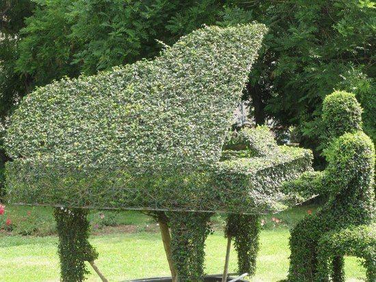 For Scott Drayco's future garden?