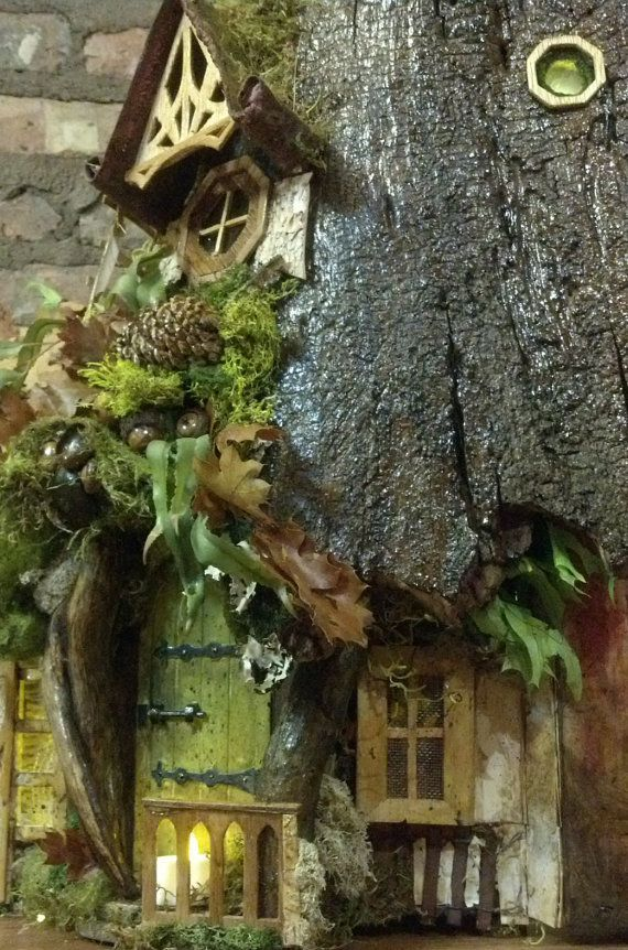 Tree stump house fairy house hollow stump from 100 year for Hollow tree trunk ideas