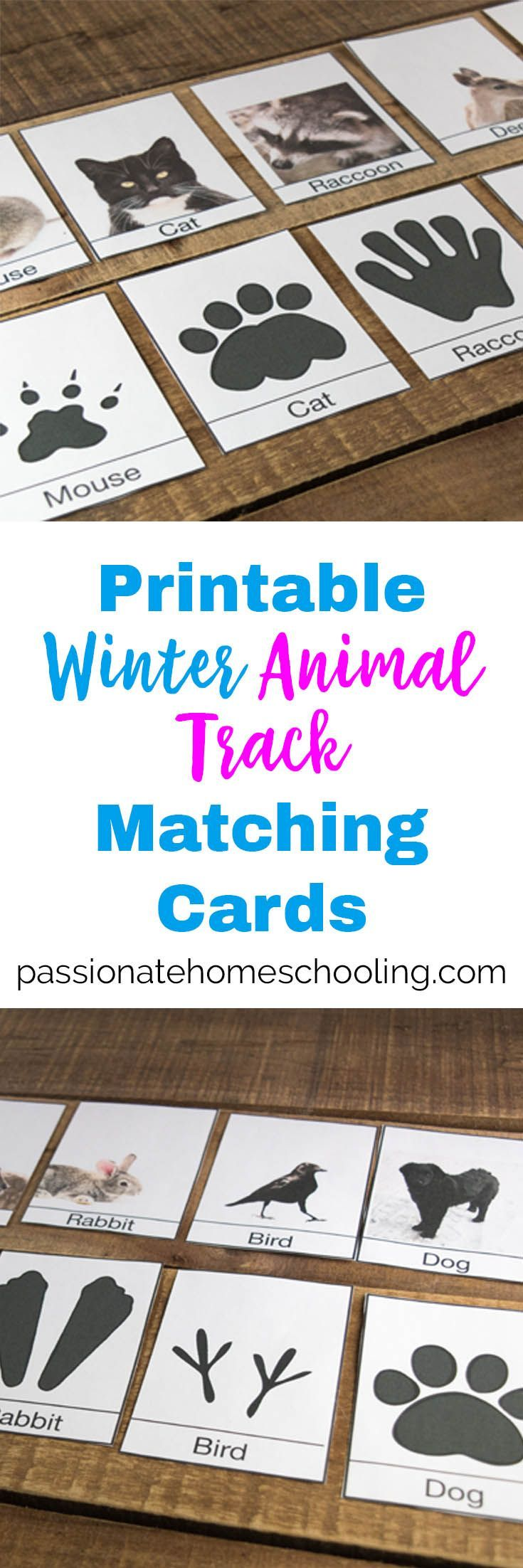 I Love These Free Printable Animal Track Cards They Are Perfect For Helping Kids To I Animal Activities For Kids Animal Matching Game Winter Animals Preschool [ 2204 x 735 Pixel ]
