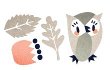 Blårollinger Owl illustration by Darling Clementine Pinned by www.myowlbarn.com