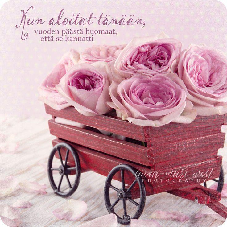 Kortti, Ruusut ja kärryt - Emma's & Mama's shop
