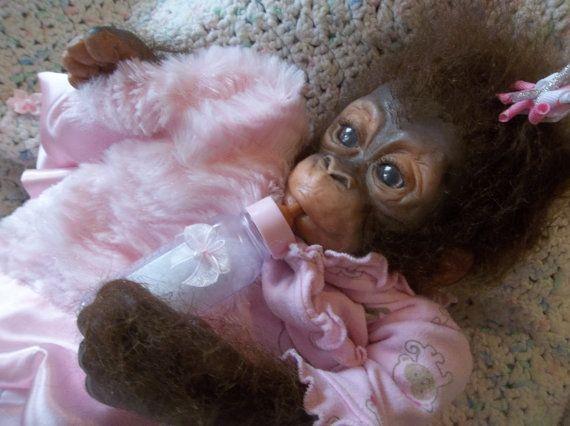 Fait sur commande commander le chimpanzé Reborn silicone singe singe poupée chimpanzé gorille bébé