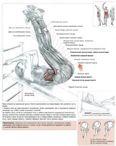 убрать жир с косых мышц живота