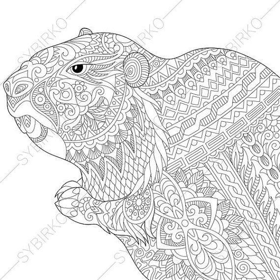 Adult Coloring Page Groundhog Zentangle Doodle Book For Adults Digital Illustration Instant Download Print